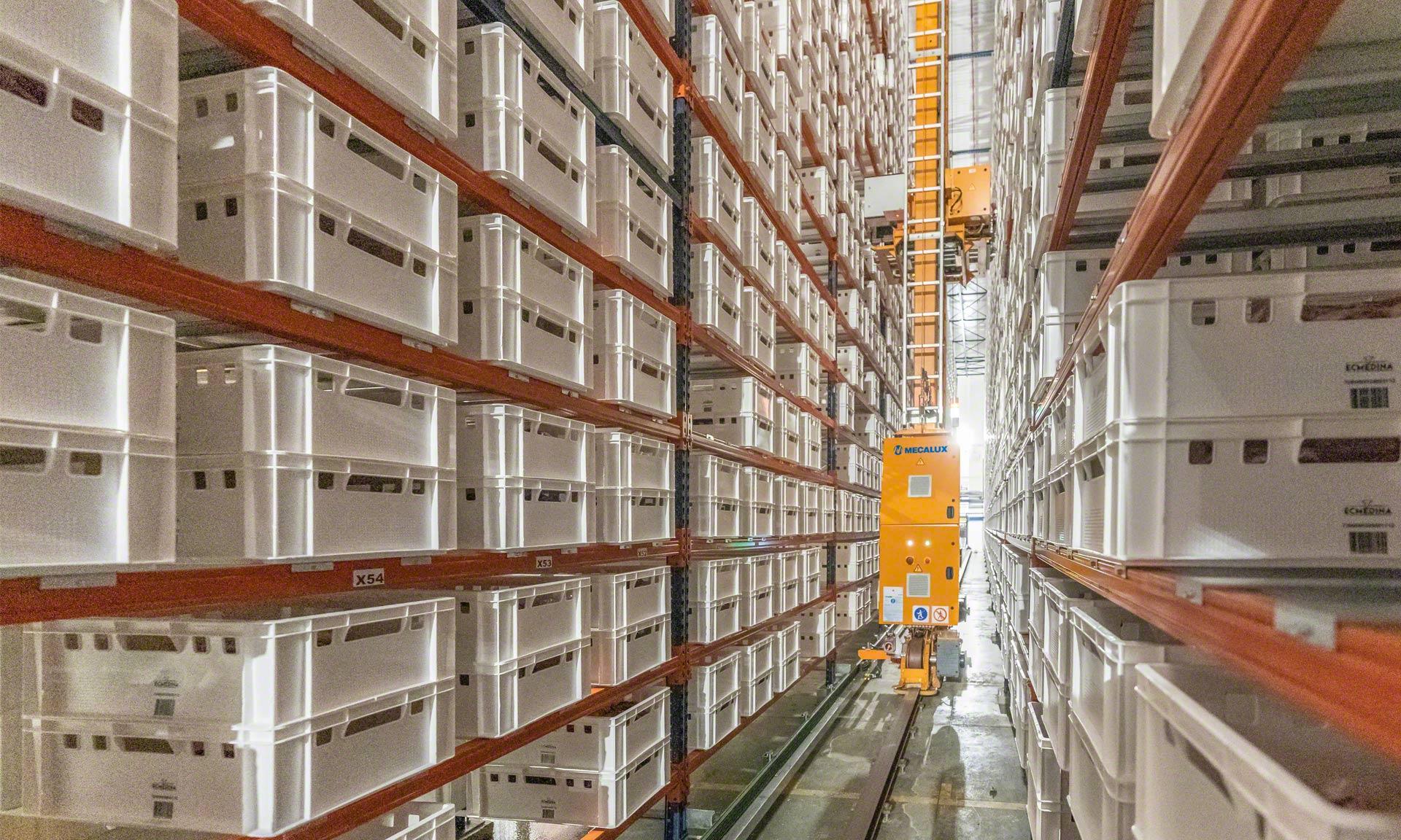 Elaborados Cárnicos Medina: 30 tysięcy ton mięsa rocznie w automatycznej dojrzewalni